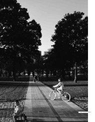 Le parc de Bercy à Paris - Annales de la Recherche Urbaine