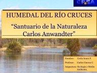 Santuario de la Naturaleza - Humedal del Río las Cruces