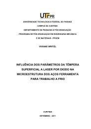 WRITZL, Viviane.pdf - PPGEM - UTFPR
