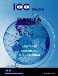 Pauta 40.pdf - ICC México