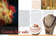 Corals for sale - X-Ray Magazine