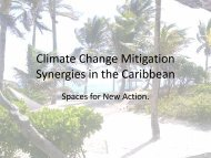 Climate Change Mitigation Synergies in the Caribbean - Belize