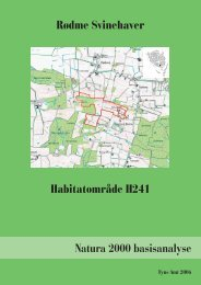 H241 Rødme Svinehaver.indd - Naturstyrelsen