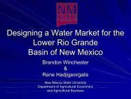 Designing a Water Market for the Lower Rio Grande Basin of New ...
