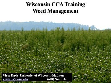 Wisconsin CCA Training Weed Management - Integrated Pest and ...