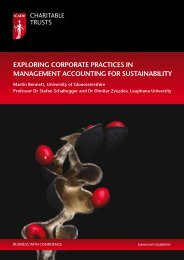 exploring corporate practices in management accounting ... - ICAEW