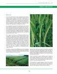 cereales y otros cultivos - Fia - Page 5