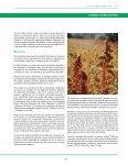 cereales y otros cultivos - Fia - Page 7