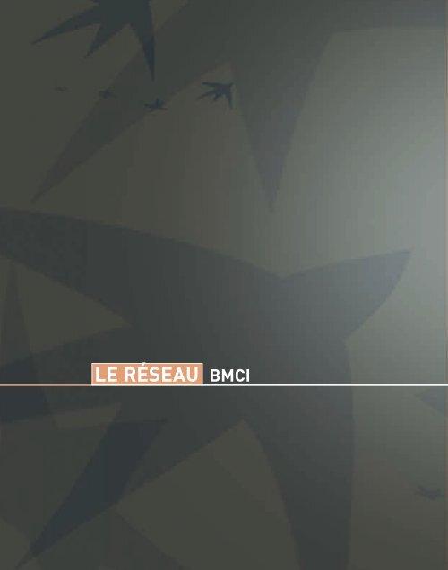 le réseau BMCI
