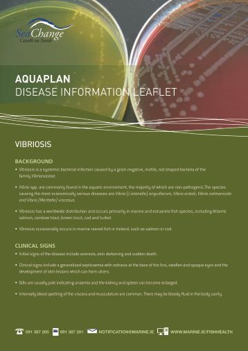 Download disease information leaflet on vibriosis - Marine Institute