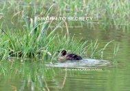 SWORN TO SECRECY - Vidya Online