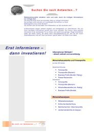 Info.Search® Image-Flyer, DIN A4