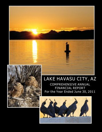 CAFR 2011-FINAL.indd - Lake Havasu City