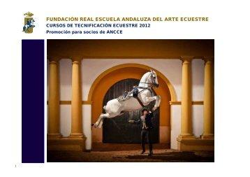 fundación real escuela andaluza del arte ecuestre - Ancce