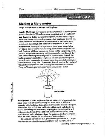 Making a Rip-o-meter