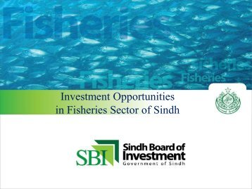 Investment Opportunities in Fisheries Sector of Sindh