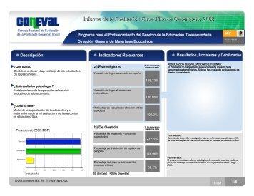 Resumen Ejecutivo - Telesecundaria