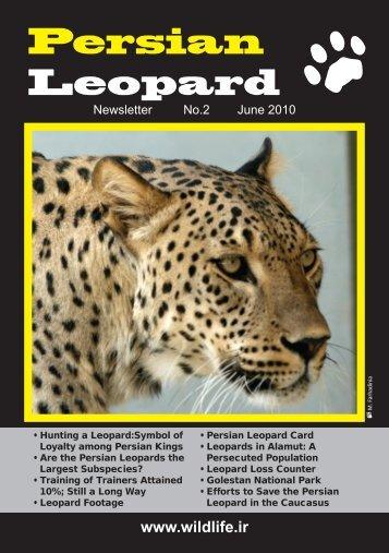 Persian Leopard