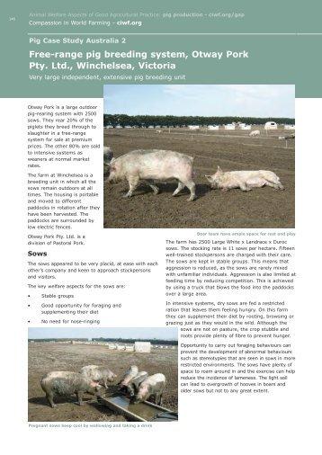 Australia 2 - Compassion in World Farming