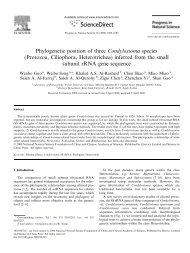Phylogenetic position of three Condylostoma species - Ocean ...