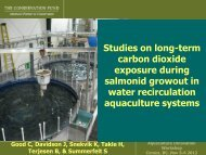 Studies on long-term carbon dioxide exposure during salmonid ...