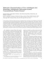 Molecular Characterization of Two Arabidopsis ... - Plant Physiology