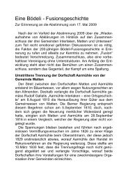 Eine Bödeli - Fusionsgeschichte - Pro Stedtli