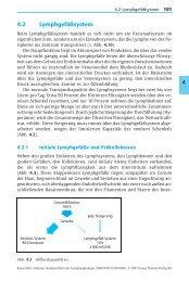 Lymphgefäße - Buchhandel.de