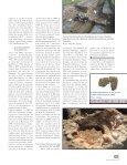 Le passé recomposé - Ville de Longueuil - Page 7