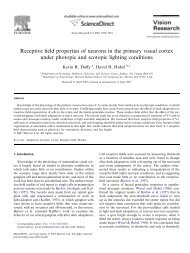 Receptive field properties of neurons in the primary visual cortex ...