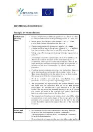 RECOMMENDATIONS FOR OULU Strategic ... - B-Team Initiative