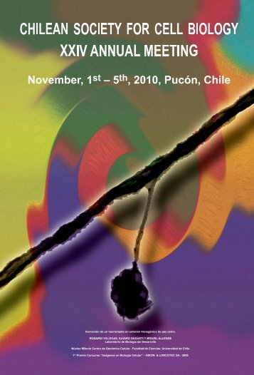 XXIV Annual Meeting, Pucón, November 1-5, 2010 - sbcch