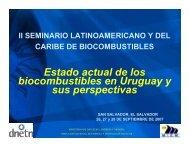 Estado actual de los biocombustibles en Uruguay y sus perspectivas