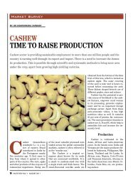CASHEW TimE To rAiSE produCTion