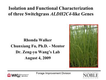 Isolation and Functional Characterization of three Switchgrass ...