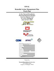 FINAL Remedial Action Management Plan Work Plan