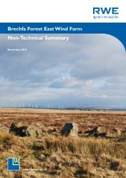 Brechfa Forest East Wind Farm Non-Technical Summary - RWE