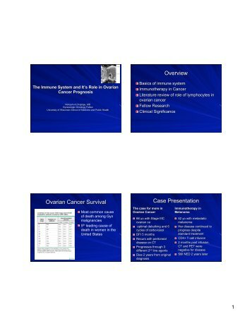 View the Presentation Slides