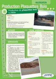 plaquettes bois - Agence régionale pour l'environnement (ARPE)