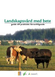 Landskapsvård med bete - Laidunpankki