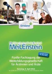 Einladungsflyer im pdf-Format herunterladen - Meilenstein-Emsland