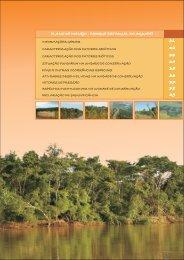 Arquivo 3: Caracterização – (Download – PDF) - Fundação Florestal