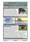 Safari Ngorongorokratern, 2 dagar safariresa - Dahl Safaris - Page 3
