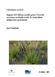 Literature review: Impact of Chilean needle grass ... - Weeds Australia