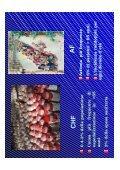 Fibrillazione atriale e scompenso cardiaco. - Cuorediverona.it - Page 4