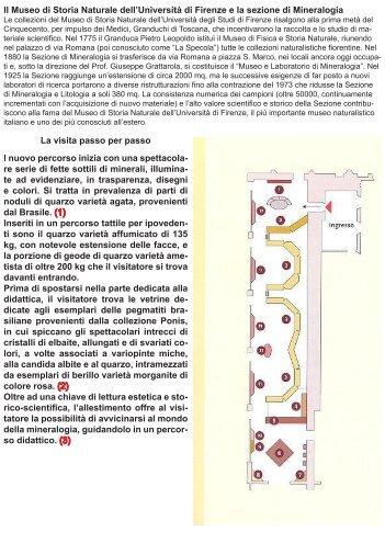 Il Museo di Storia Naturale dell'Università di Firenze e la sezione di ...