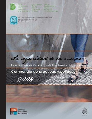 La seguridad de la mujer - International Centre for the Prevention of ...