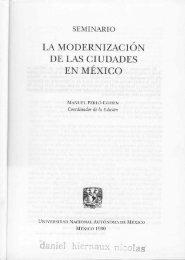 LA MODERNIZACIÓN DE LAS CIUDADES - DanielHiernaux.Net