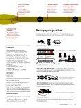 Genes bailarinos - Revista Pesquisa FAPESP - Page 6