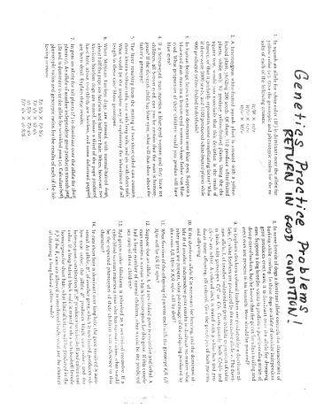 Genetics practice problems worksheet keyppt